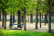 De Tuilerieën Parijs